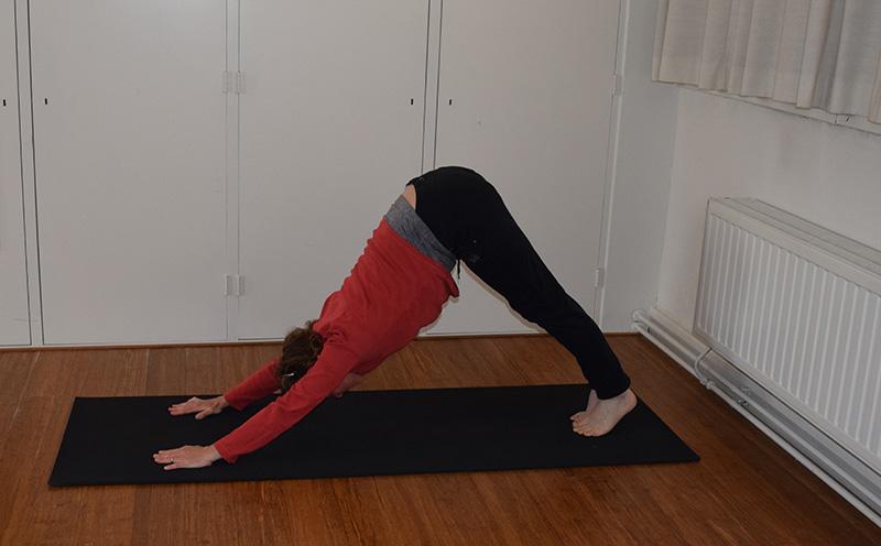 AdemLink - Hatha Yoga lessen - Soepel lichaam - Vitaal gevoel - V2